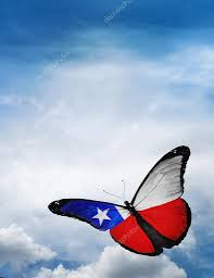 Chile Santiago Flag Chile Flag Butterfly U2014 Stock Photo Sun Tiger 57323087