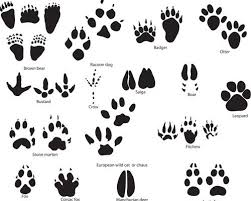 footprints tattoo designs on feet photos pictures and sketches