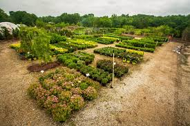 Landscaping Columbia Mo by Wholesale Rost Landscaping