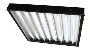 8 T5 Light Fixtures Apollo Horticulture 2 8 Ho T5 Fixture Review T5 Grow