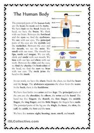 free human body worksheets worksheets