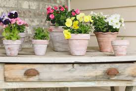 How To Paint A Flower Vase How To White Wash A Terra Cotta Pot Summer Front Porch Tidbits