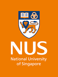 nus national university of singapore identity