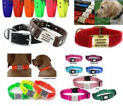 personalized collars leather synthetic