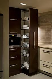 Kitchen Pantry Ideas by Best 25 Slide Out Pantry Ideas On Pinterest Kitchen Spice Racks