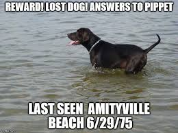 Jaws Meme - if seen please contact guy with the yellow shirt imgflip