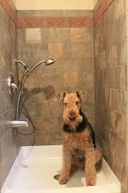 brick tile news from inglenook custom tiles in dog shower loversiq