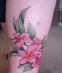 42 best plumeria tattoo meaning images on pinterest draw flower