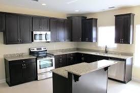Dark Blue Kitchen Remodelling Your Home Decor Diy With Improve Ellegant Dark Blue