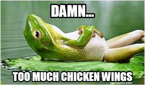 Funny Frog Meme - too much chicken wings funny frog meme picture best humor website