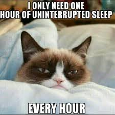 Sleep Meme - 30 most funny sleeping meme photos you have ever seen