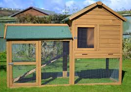 Large Rabbit Hutch Ideal Bunny Homes U2013 Carly U0027s Mini Lop Bunnies