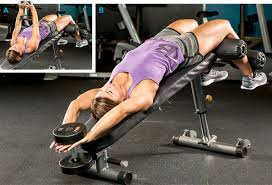 Workouts With A Bench 10 Best Muscle Building Back Exercises