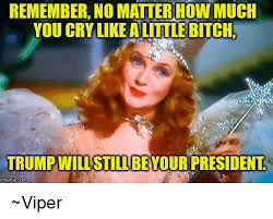 Little Bitch Memes - rememberno matiernow much you cry like a little bitch trump will