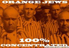 Orange Jews Meme - orange jews 100 percent concentrated myconfinedspace