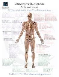 mri codes cheat sheet mri scans san jose bay http www