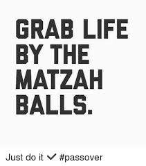 Passover Meme - grab life by the matzah balls just do it passover just do