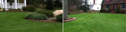 Lawn Landscape by Landscape Design Tree Care Lawn Care Carpentry Stonework