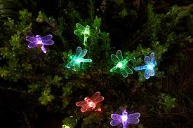 String Patio Lights by Essential Garden Solar Dragonfly String Lights 20 Ct Outdoor