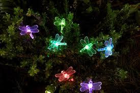 String Lights Garden by Essential Garden Solar Dragonfly String Lights 20 Ct Outdoor