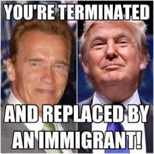 Schwarzenegger Meme - arnold schwarzenegger memes top 20 terminator memes