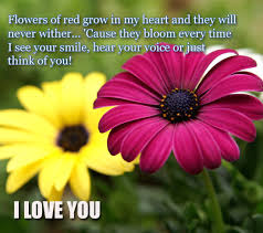 thinking of you flowers flowers of free thinking of you ecards greeting cards