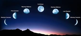 moon in the 4th house of horoscope vedic astrology vedicgrace