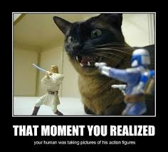 Meme Figures - i can has cheezburger action figures funny internet cats cat