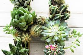 diy succulent planter in the shape of an initial makes a sweet