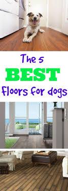 what s the best flooring for dogs flooringinc