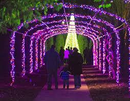 holiday lights cheekwood estate u0026 gardens nashville