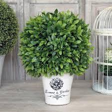 Laurel Topiary - laurel topiary ball
