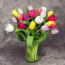 tulip bouquets tantalizing tulip bouquet kremp