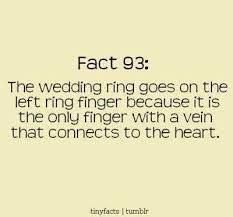 wedding quotes ring wedding ring quotes quotes everyday