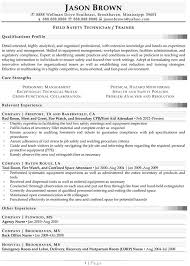 health and safety professional resume