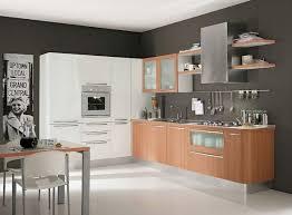 modern white kitchen cabinets dark cabinet kitchen modern normabudden com