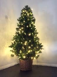 for sale luxury dobbies 6ft pre lit tree with basket