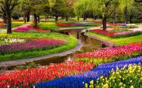 garden inspiring flowers garden decor style chaming colourful