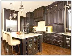 tall kitchen cabinet with doors pantry cabinet tall pantry cabinet with doors with large door