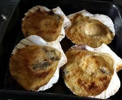 cuisiner noix de jacques surgel馥s coquilles jacques gratinées recette de coquilles