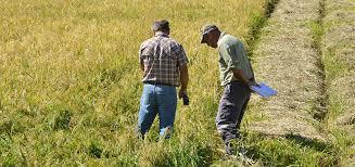 lancement des parcours de compétences en agriculture sur le ppap archives agriculture nc