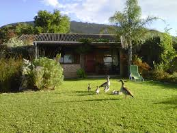 brenton lake holiday cottages brenton on sea south africa