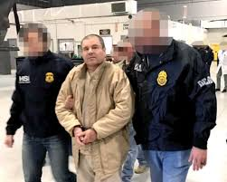 mayates ychacales acapulco boys borderland beat from the sinaloa truce to the empowerment of the cjng