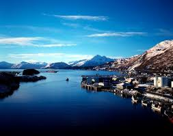 Alaska travel places images Best 25 kodiak alaska ideas alaska summer alaska jpg