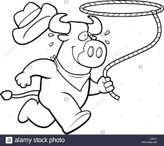 rodeo bull black and white stock photos u0026 images alamy