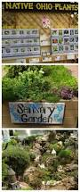 native ohio plants beech creek botanical garden u0026 nature preserve the gardening cook