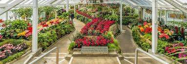 beaches gardens and parks in whanganui official tourist site