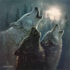 wolves images wolves howling at the moon wallpaper and background