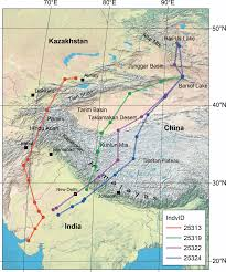 Himalayan Mountains Map Migratory Routes Across The Himalayas Used By Demoiselle Cranes