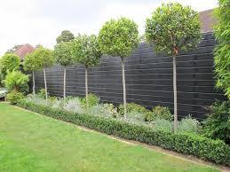 Fence Ideas For Garden Best 25 Garden Fences Ideas On Pinterest Fence Garden Garden